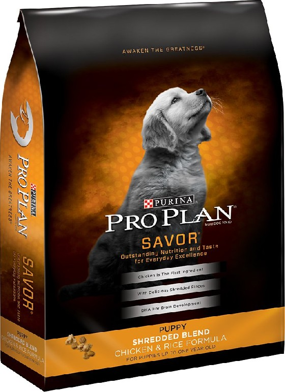 WE FEED AND RECOMMEND PURINA  PRO-PLAN